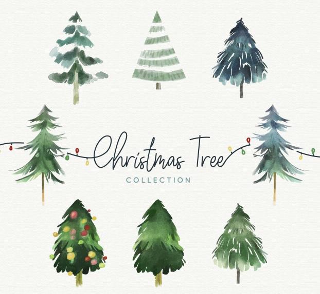 La Elección del Árbol de Navidad