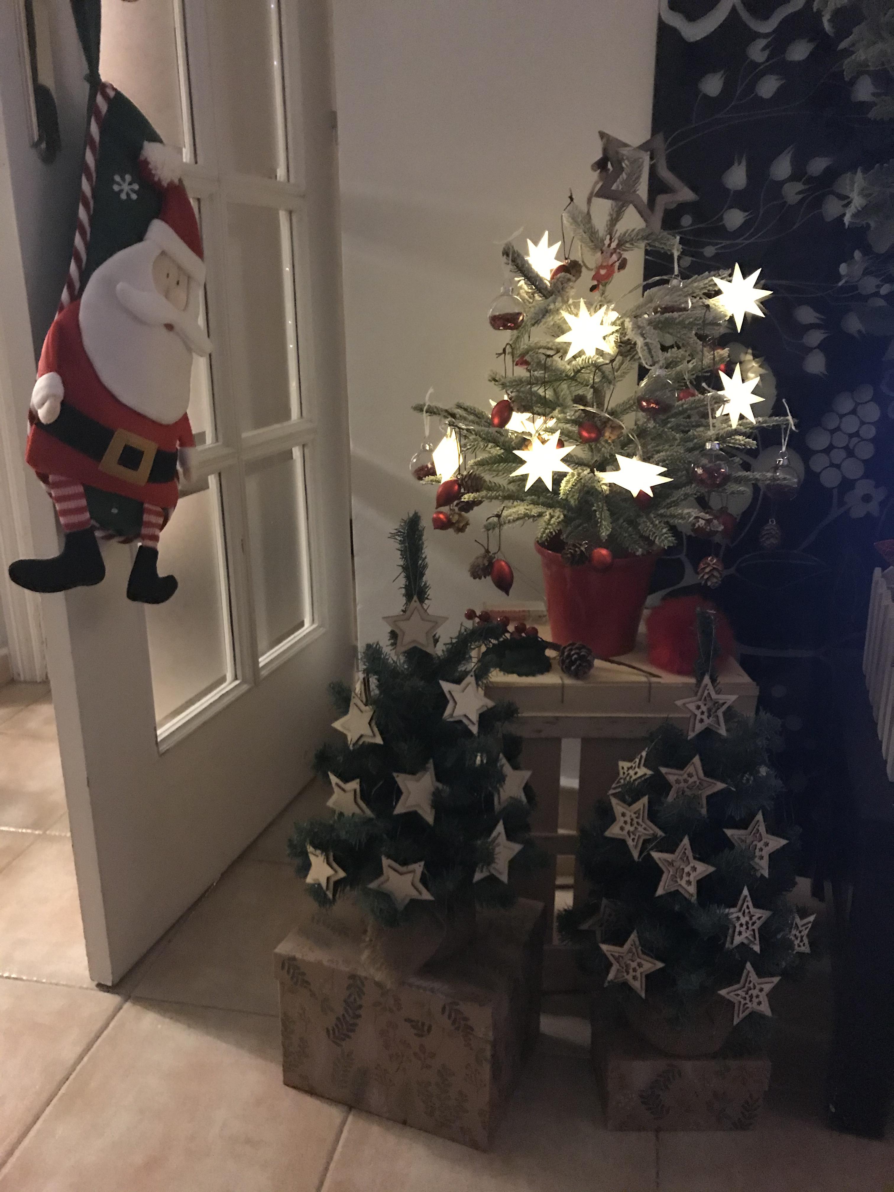 Selección árboles de Navidad